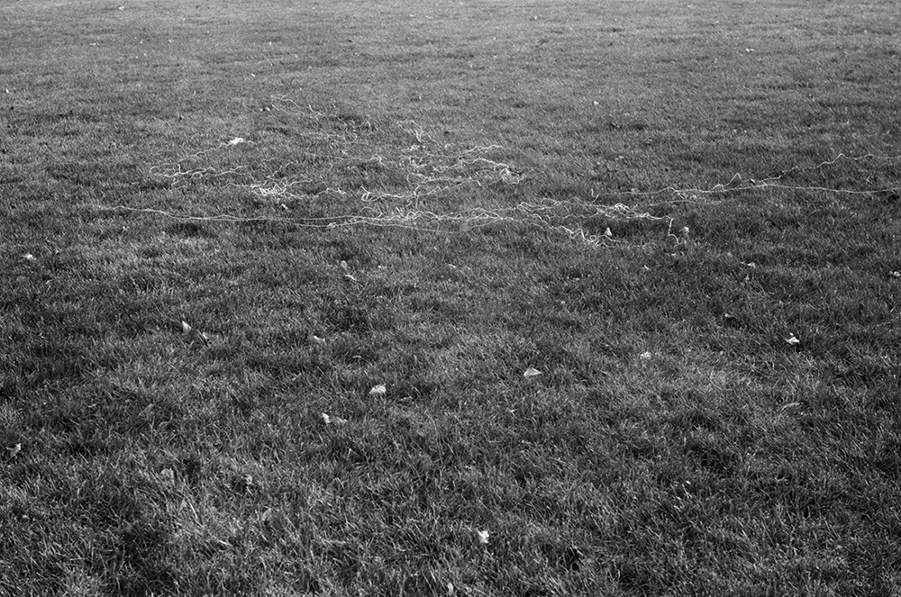 canvas thread blown by the wind while flying a kite Ft. Hamilton variable dimension documentary photograph, gelatin silver print 2013