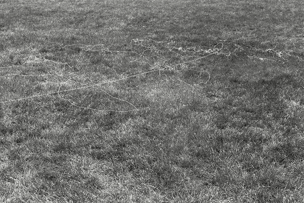 canvas thread blown by the wind while flying a kite Sheep Meadow variable dimension documentary photograph, gelatin silver print 2012